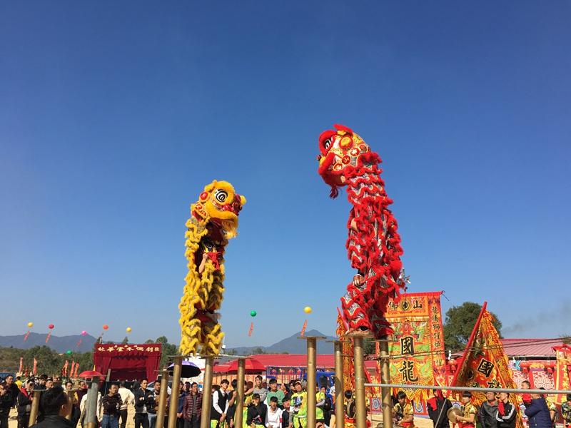 宁波双狮梅花桩表演